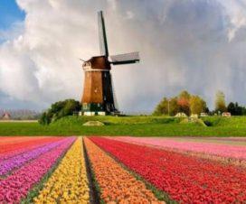 4 Razones Para Viajar a Europa