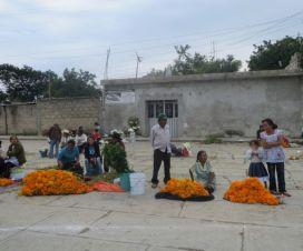 Tradiciones Mexicanas La Flor de Cempasúchil