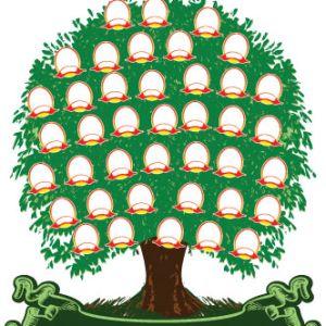 La Importancia De Un árbol Genealógico El Rincón De Edy