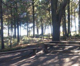Área de Descanso Parque Nacional Izta Popo