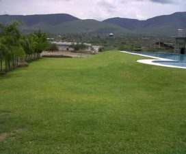 Balneario Chilsoleate Yautepec Morelos