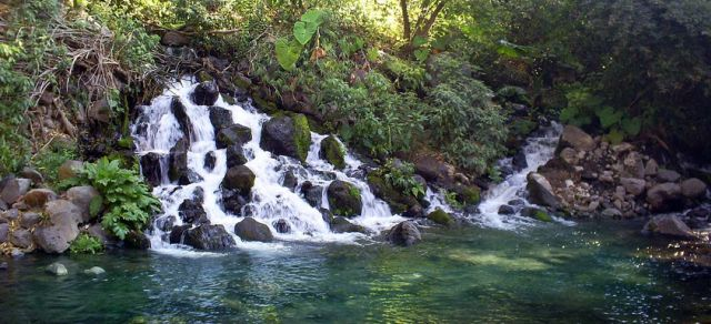 Balneario Ejidal El Bosque Oaxtepec Morelos