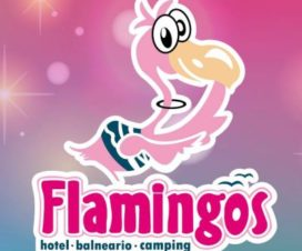 Balneario Flamingos Tizayuca Hidalgo