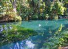 Balneario Las Estacas Morelos