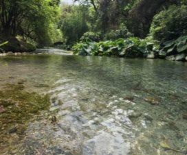 Balneario Los Nogales Jaumave Tamaulipas