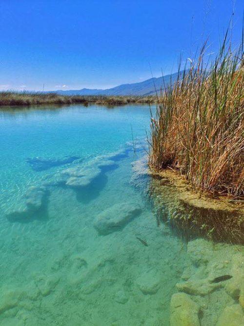 Balneario Rio Mezquites Cuatro Ciénegas Coahuila