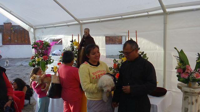 Bendición de Mascotas San Antonio Abad 10