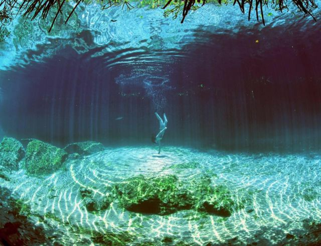 Casa Cenote o Cenote Manatí Tulum