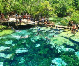 Cenote Azul Riviera Maya Quintana Roo