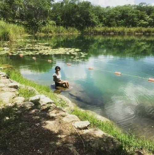Cenote Chen Há Kopomá Yucatán