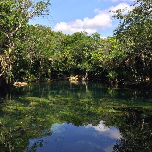 Cenote Chikin-ha Puerto Aventuras Quintana Roo