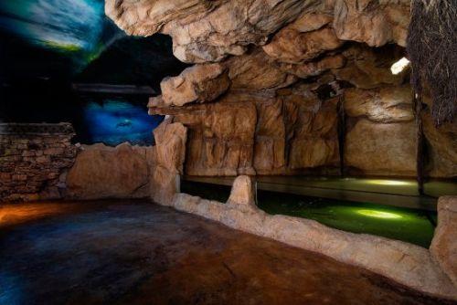 Cenote El Acuario de Playa
