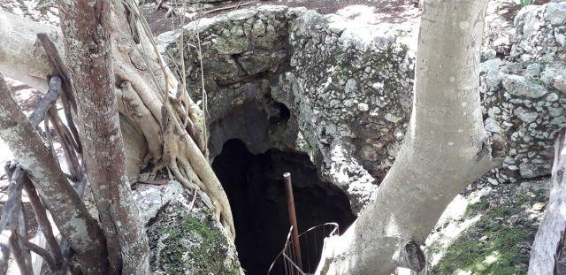 Cenote Francisco Ayún Nah Cacalchén Yucatán
