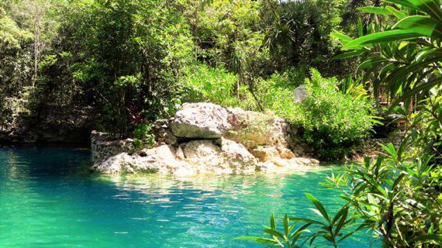 Cenote Las Palmas Puerto Morelos Quintana Roo