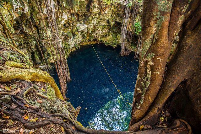 Cenote Lol Ha Yaxuná Yucatán