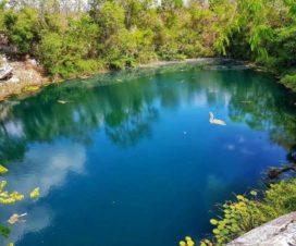 Cenote Sabak Há Sacalum Yucatán