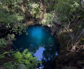 Cenote Yaal-Utzil Mucuyché Yucatán