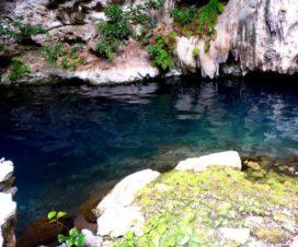 Cenote Yaxbacaltún Homún Yucatán