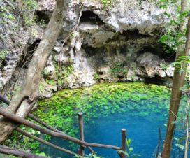 Cenote Zapote Puerto Morelos Quintana Roo
