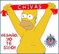 Chivas Homero