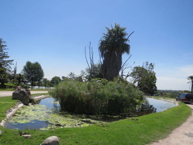 Comenzando el Tour en Africam Safari Puebla