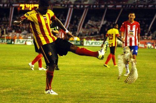 Deportivo Pereira Luis Moreno