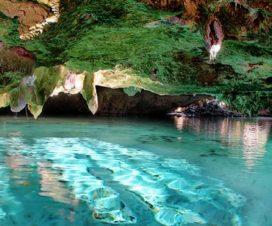Descubre los Cenotes de la Península de Yucatán en Automóvil