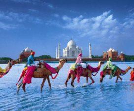 Disfruta de un Viaje de Ensueño por la India y Nepal