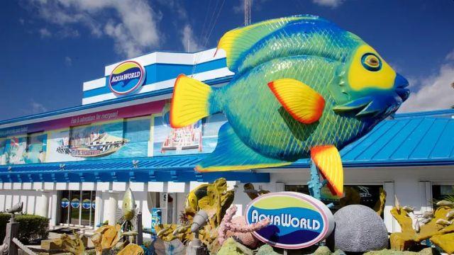 Disfruta tus Vacaciones de Verano Cancún 2019 con Aquaworld
