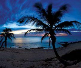 Dónde Rentar un Auto en Tulum Quintana Roo