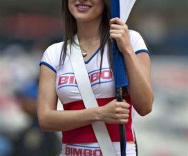 Bellas Chicas Hinchas Chivas Fútbol