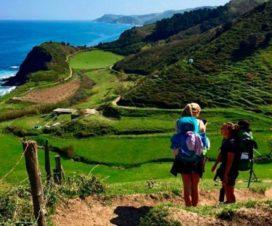 El Camino de Santiago, Cultura, Gastronomía y Naturaleza