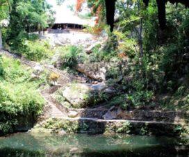 El Cenote Zací Valladolid Yucatán