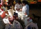 El Delicioso Pulque de Tlalpujahua Michoacán