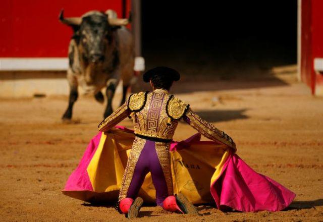 El Mundo del Toro en España