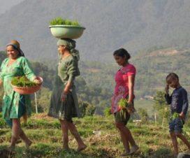 El FIDA reafirma su compromiso de ayudar a Colombia a superar los efectos de 50 años de conflicto
