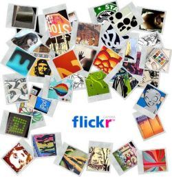 Flickr Fotos