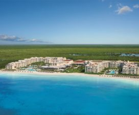 Hotel Now Jade Riviera Cancún Pet Friendly