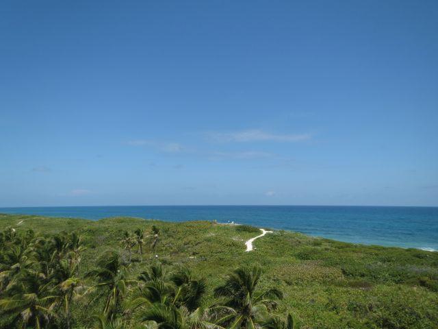 Isla Contoy El Paraíso de México