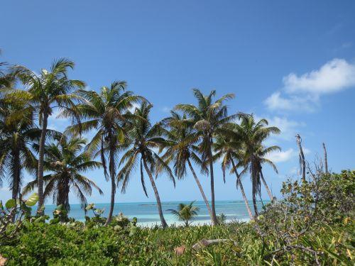 Isla Contoy Quintana Roo