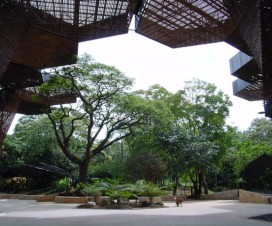 El Jardín Botánico de Medellín uno de los lugares más reconocidos de Colombia