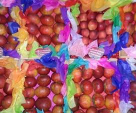 Las Deliciosas Manzanas de Zacatlán Puebla