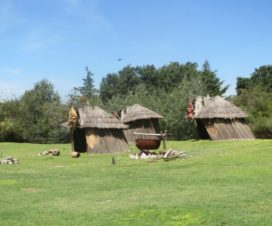Libélula o Caballito del Diablo en Africam Safari Puebla