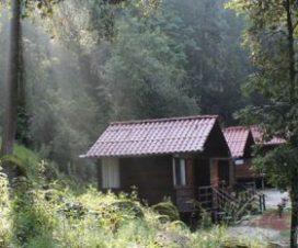 Los Azufres Spa Natural Michoacán