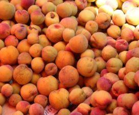 Los Deliciosos Duraznos de San Nicolás de los Ranchos Puebla