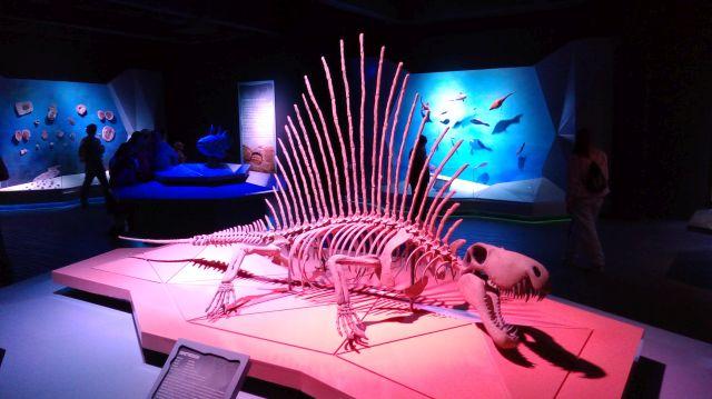 museo de la evolucion puebla