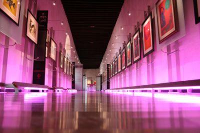 Museo Pedro Coronel Zacatecas
