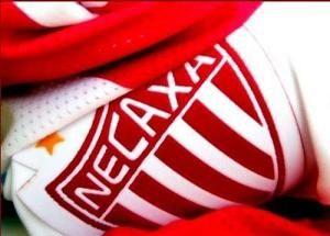 Necaxa Fútbol Logo