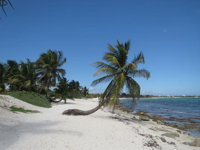 Ofertas de Viajes a la Riviera Maya 2016