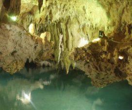 Parque de Cenotes Yaxmuul Tulum Quintana Roo